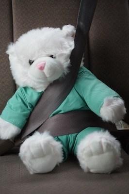 Wear Your Seatbelt!!